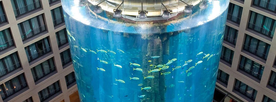 El Aquadom de Berlín: un ascensor metido dentro de un acuario